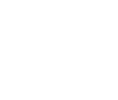 Holey Moley Logo 118 x 60